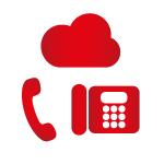 Program VLD Plus obsahuje telefónnu ústredňu s funkciami potrebnými pre ambulancie, nekonečené hovory do slovenských pevných sietí, 100 minút do slovenských mobilných sietí a 2 telefóny na prenájom.